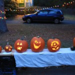 pumpkin-line-up